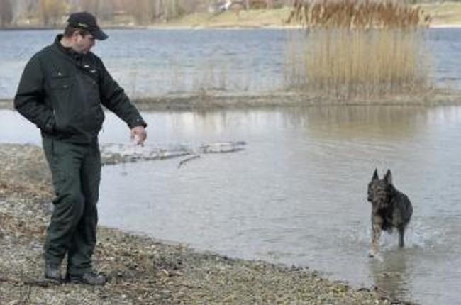 FOTO  Policajti so psami trénujú vyhľadávanie mŕtvol  2f7a8e73abd