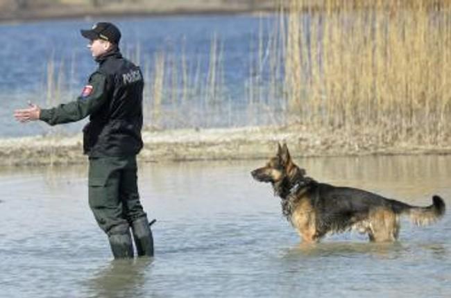 Foto  policajti so psami trénujú vyhľadávanie mŕtvol -  t 170307 Kynologia Cvicenie Mrtvolny 10411261 0c305f85735